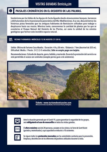 Programa oficial de visitas guiadas: paisajes cromáticos en el Desierto de les Palmas