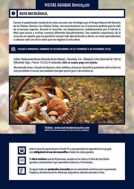 Programa oficial de visitas guiadas: ruta micológica
