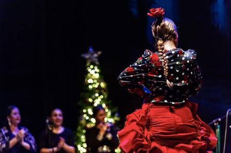 Espectáculo flamenco: ZAMBOMBA FLAMENCA