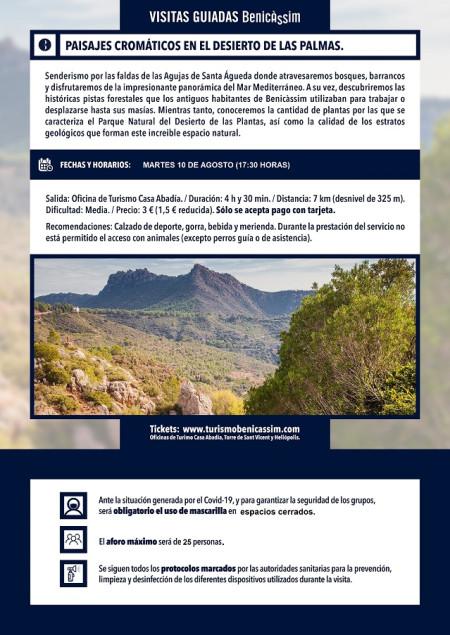 Programa oficial de visitas guiadas: paisajes cromáticos.